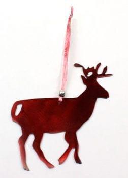 O13---Deer