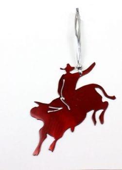 O6---Bull-Rider