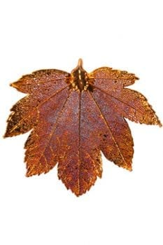 Dipped Gold & Copper Iridescent Leaf Ornaments